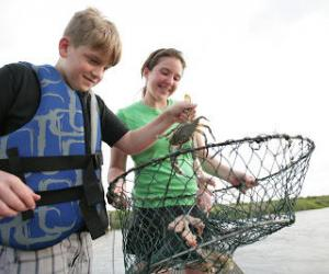 Crabbing on Creole Nature Trail